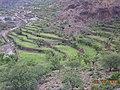 قرية عدن ضبة السفلى 2013 - panoramio.jpg