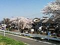 三宅神社 - panoramio (1).jpg