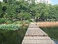 九山湖上的小桥 - panoramio.jpg