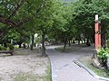 天祥梅園 Tianxiang Plum Garden - panoramio.jpg