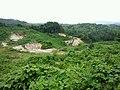 広大な空き地 - panoramio.jpg