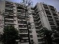 建築物攝影 - panoramio - Tianmu peter (8).jpg