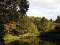 館山堤 Tateyama Pond - panoramio (1).jpg