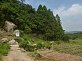 鼓岭3号游步道 - No.3 Walkway of Guling Mountain - 2015.06 - panoramio (1).jpg
