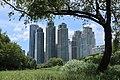 양재천과 삼성 타워팰리스 Samsung Tower Palace and Yangjaecheon Stream 4.jpg