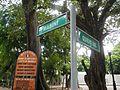 05457jfQuirino Avenue Mabini Barangays Malate Manilafvf 12.jpg