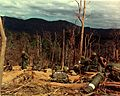 12th Inf, 4th Inf Div, Vietnam War Hill 530.jpg