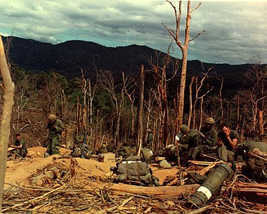 American soldiers during the Vietnam War, 1967 12th Inf, 4th Inf Div, Vietnam War Hill 530.jpg