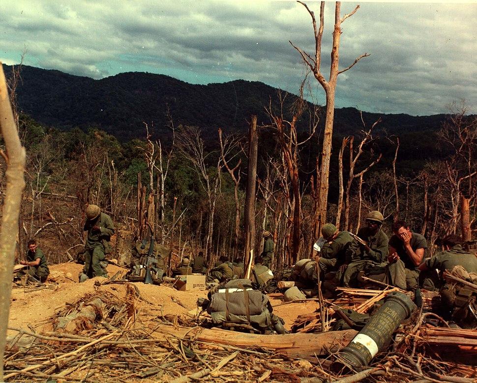 12th Inf, 4th Inf Div, Vietnam War Hill 530