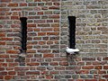 1671 Medemblik, Netherlands - panoramio (108).jpg