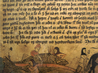 Whaling in Iceland - Icelanders flenching a whale from a 16th-century manuscript