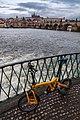 18-02-01-Birdy-in-Prag-RalfR RRK0994.jpg