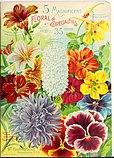 1900 Maule's seed catalogue (1900) (16640891696).jpg