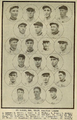 1915 St. Louis Browns.png
