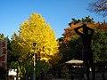 1 Chome Kōenjiminami, Suginami-ku, Tōkyō-to 166-0003, Japan - panoramio.jpg