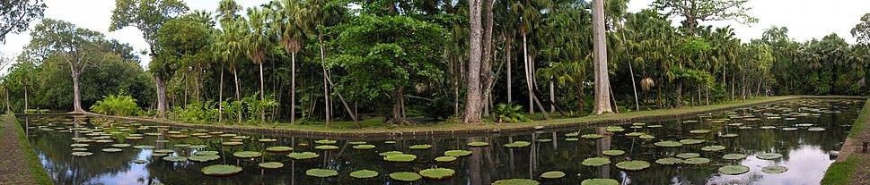 2006-10-06 Pamplemousse Botanical Garden, Mauritius