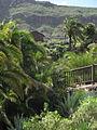 20100222-0306 Gran Canaria (1237).jpg