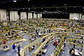 2016-10-01-riesa-fremo-layout-hall-overview.jpg