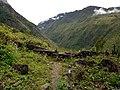 20170904 Papouasie Baliem valley 5.jpg