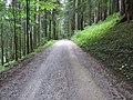 2018-08-11 (176) Way to Tirolerkogel, Annaberg, Austria.jpg