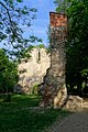 20190502 Ruiny franciszkańskiego kościoła na Wyspie Małgorzaty 0736 1906 DxO.jpg
