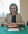 2020 Alma Zadić Ministerrat am 8.1.2020 (49351570467) (cropped).jpg