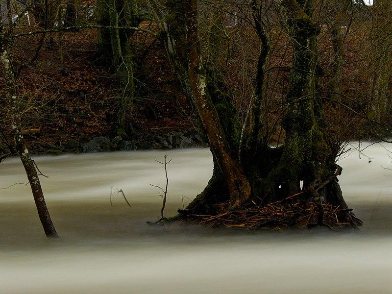 L'eau coule... 800px-2021-02-02_14-08-04_savoureuse-Belfort