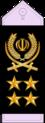 21- IRIADF-Gen.png
