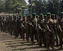 Papua New Guinea Defence Force - Wikipedia