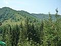 5725 Cherni Vit, Bulgaria - panoramio.jpg