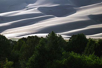 Great Sand Dunes National Park and Preserve - Reversing dunes above the edge of the montane forest