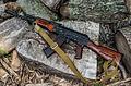 AK74-by-spaxspore-2.jpg