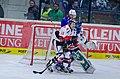 AUT, EBEL,EC VSV vs. HC TWK Innsbruck (11000620724).jpg