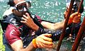 A Instructor helping to diver.jpg