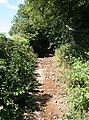 A Stony Path - geograph.org.uk - 1433681.jpg