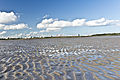 A Visit To Sandymount Strand (6050707711).jpg