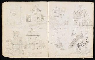 Joseph Jackson Lister - Lister's sketchbook