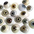 A selection of glass eyes from an opticians glas eye case. Wellcome L0036582.jpg
