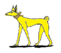 A yellow dog.png