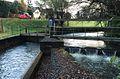 Aabach Kanaleinlauf Niederlenz.jpg