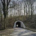 Aanzicht op de paraboolvormige oostelijke tunnel, de fietstunnel, met doorkijk - Kerkrade - 20388031 - RCE.jpg