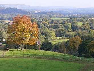 Wotton, Surrey - Image: Above Logmore Green geograph.org.uk 589183