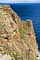 Acantilado en El Pilar de la Mola (HDR) (3450081612).jpg