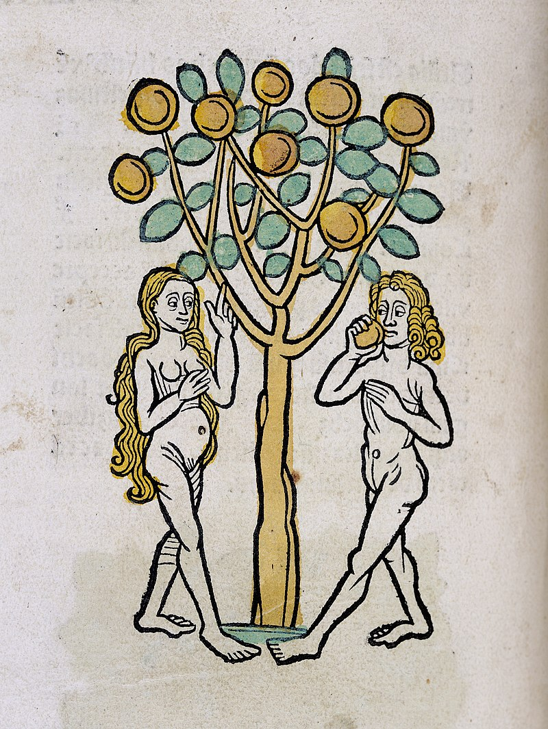 Adam and Eve under the Tree of life, woodcut 1547 Wellcome L0029215.jpg