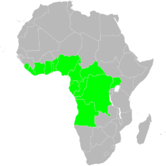 Africa-Dacryodes edulis.png