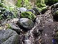 Agua entre las rocas - panoramio (1).jpg