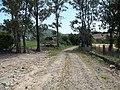 Alameda Cândido Brasil Moro - Palma - Santa Maria, foto 02 (sentido S-N).jpg - panoramio.jpg
