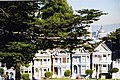 Alamo Square, San Francisco - panoramio (1).jpg