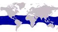 Alectis ciliaris distribution.PNG