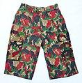 Alpenflage Shorts.jpg